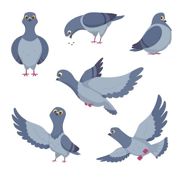 Cartoon set di piccioni divertenti. illustrazioni di uccelli Vettore Premium