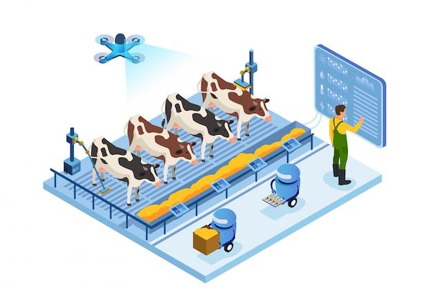 Caseificio del futuro, mucche e operatore, robot Vettore Premium