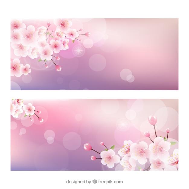 Cherry blossoms striscioni con effetto bokeh Vettore gratuito