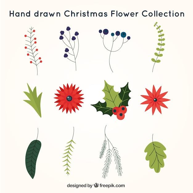 Christmas pack fiori disegnati a mano scaricare vettori for Fiori disegnati