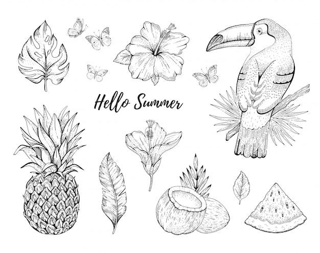 Ciao insieme tropicale dell'illustrazione di estate Vettore Premium