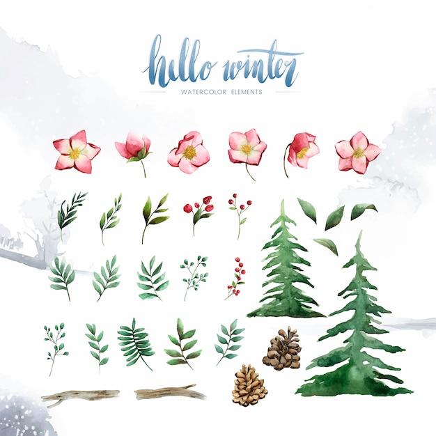 Ciao piante invernali e fiori dipinti dal vettore dell'acquerello Vettore gratuito