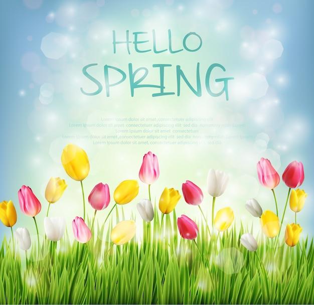 Ciao sfondo primavera con fiore tulipano su bokeh offuscata Vettore Premium