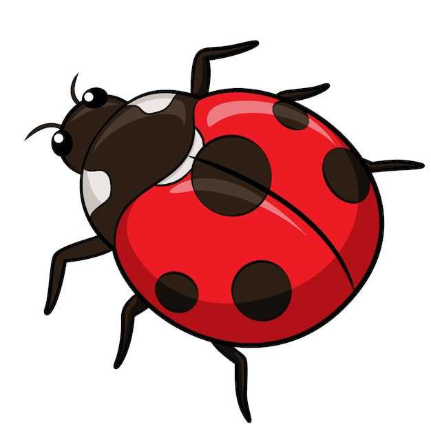 Coccinella cartoon Vettore Premium
