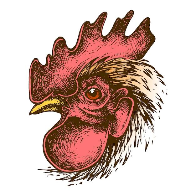 Cock ink drawing Vettore Premium