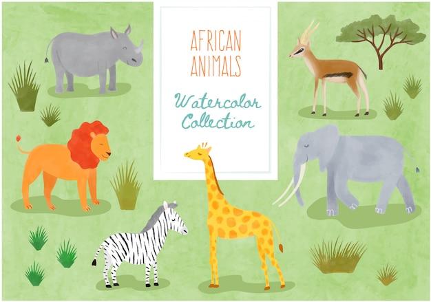 Collezione acquerello - cute african animals Vettore Premium