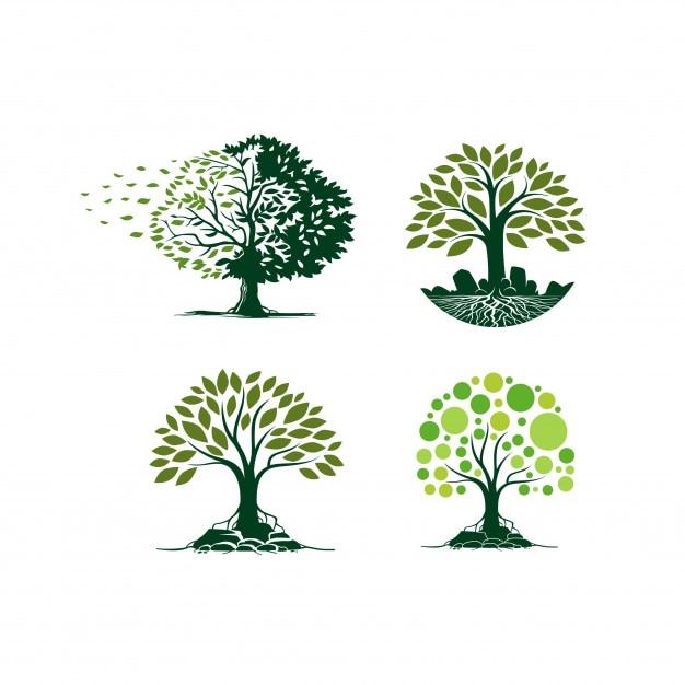 Collezione di alberi Vettore Premium