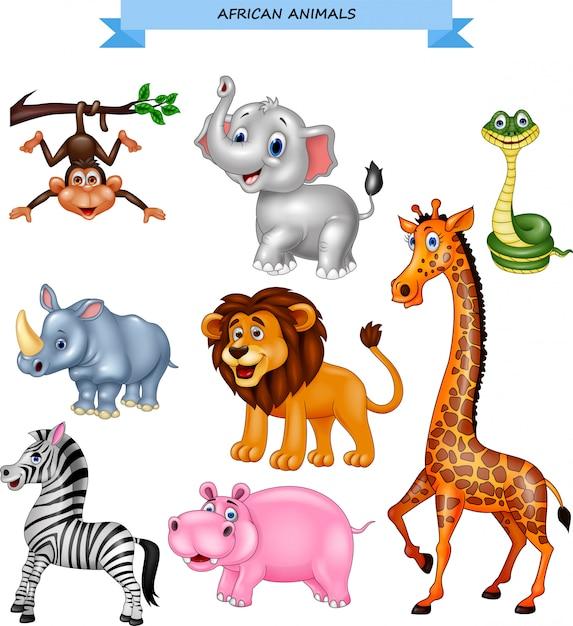 Collezione di animali africani dei cartoni animati Vettore Premium