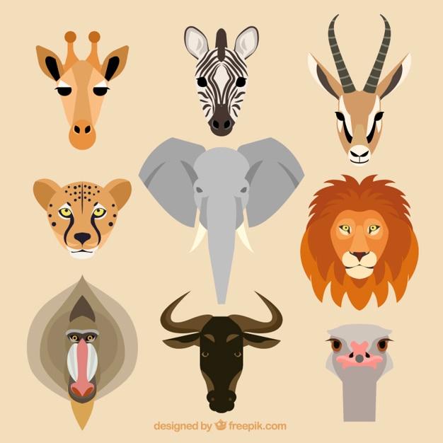 Collezione di animali africani Vettore gratuito