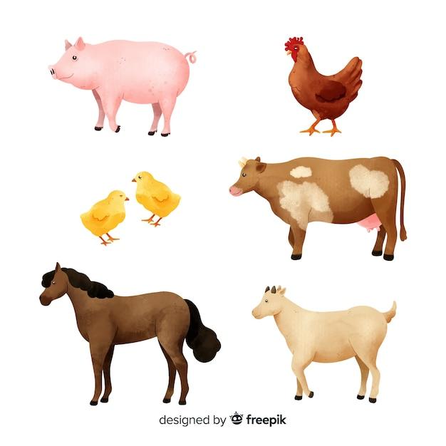 Collezione di animali da fattoria dell'acquerello Vettore gratuito