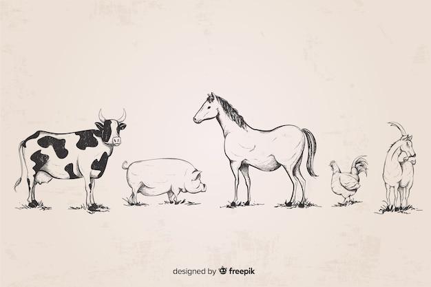 Collezione di animali da fattoria disegnata a mano Vettore gratuito