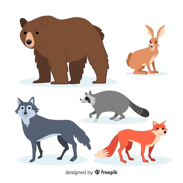 Collezione di animali della foresta autunno disegnato a mano Vettore gratuito