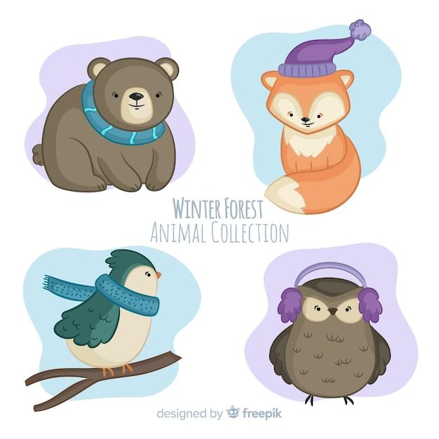 Collezione di animali della foresta invernale  251642fff09