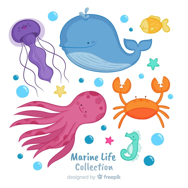 Collezione di animali marini disegnati a mano Vettore gratuito