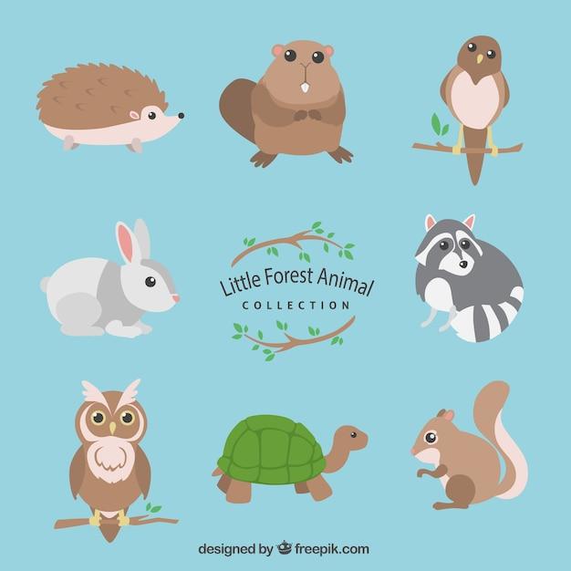 Collezione di animali piccola foresta Vettore gratuito