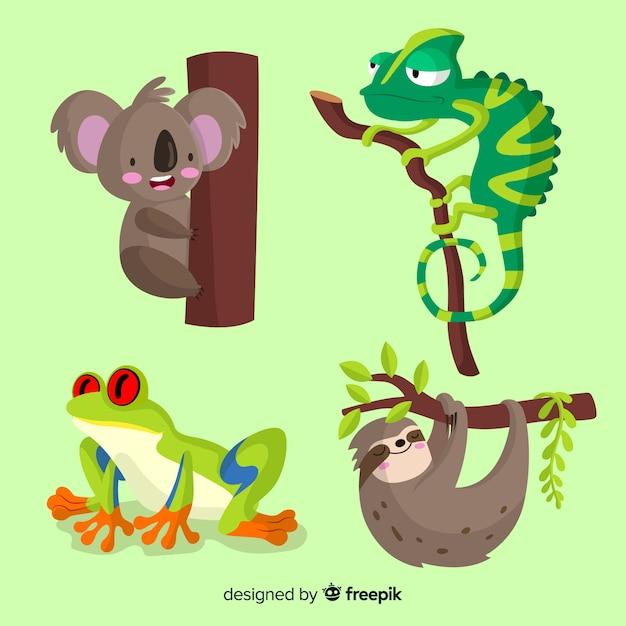 Collezione di animali tropicali piatta Vettore gratuito