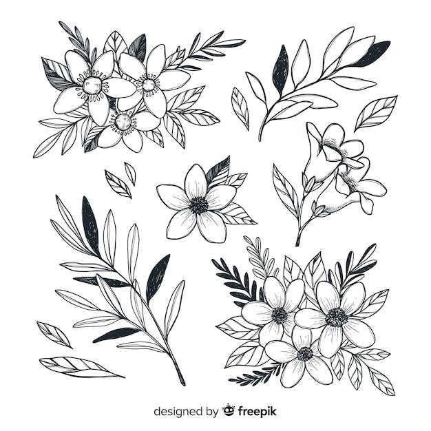 Collezione di bellissimi fiori stile disegnato a mano Vettore gratuito