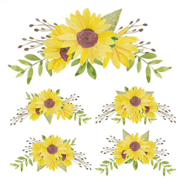 Collezione di bouquet di girasole dipinto ad acquerello Vettore Premium