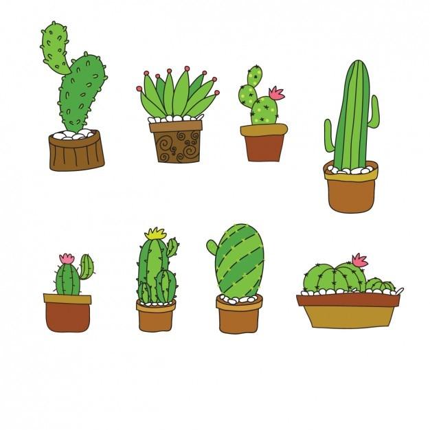 Collezione di cactus sveglio in design piatto scaricare for Costruttore di layout gratuito