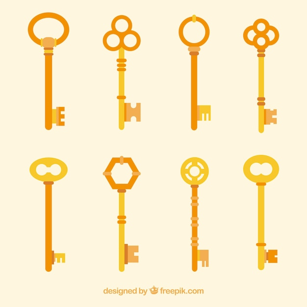 Collezione di chiavi piatte Vettore gratuito