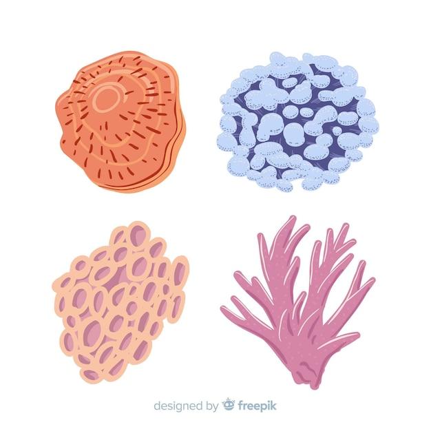 Collezione di coralli disegnati a mano Vettore gratuito