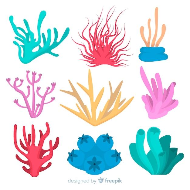 Collezione di corallo piatto Vettore gratuito