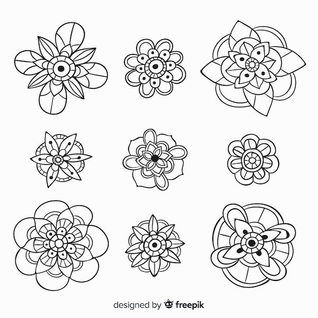 Collezione di elementi floreali disegnati a mano Vettore gratuito
