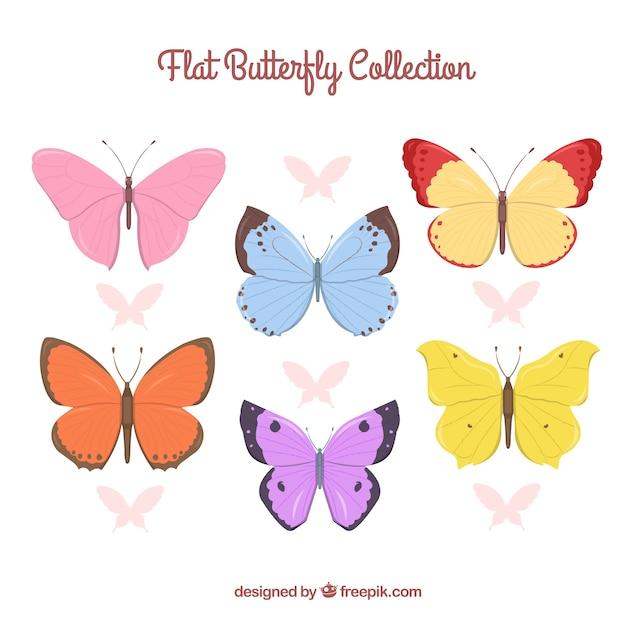 Collezione di farfalle colorate scaricare vettori gratis for Foto farfalle colorate