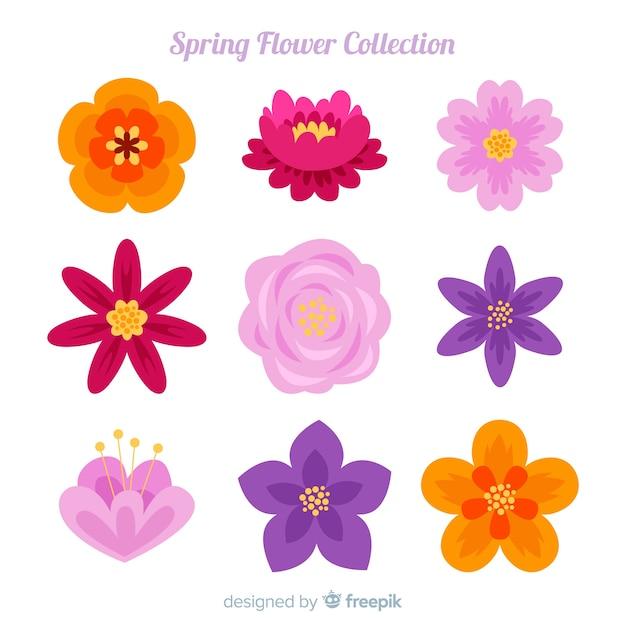 Collezione di fiori di primavera Vettore gratuito