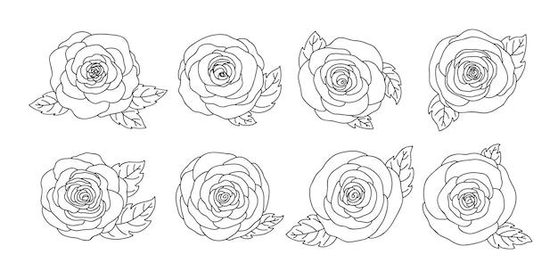 Collezione di fiori di rosa disegnati a mano Vettore Premium