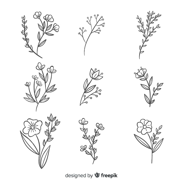 Collezione di fiori disegnati a mano realistica Vettore gratuito