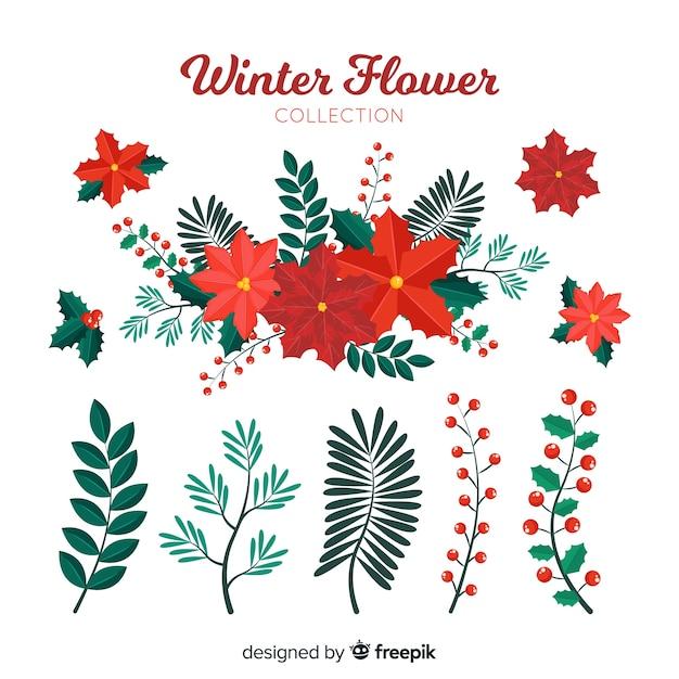 Collezione di fiori invernali Vettore gratuito