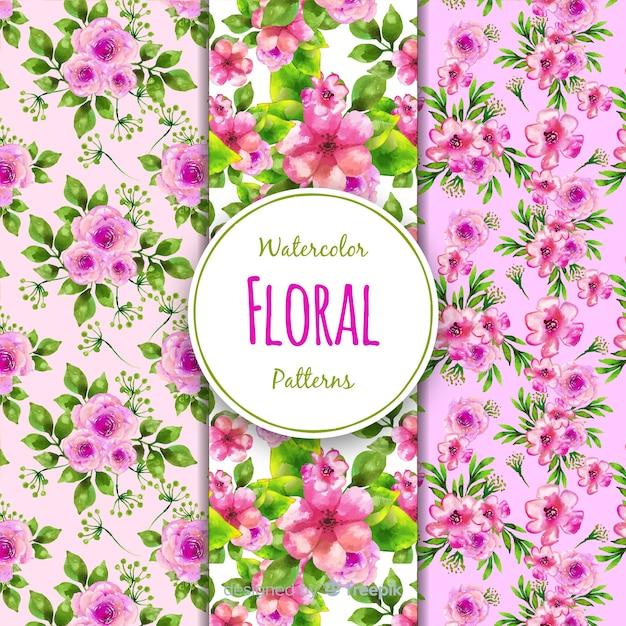 Collezione di fiori Vettore gratuito