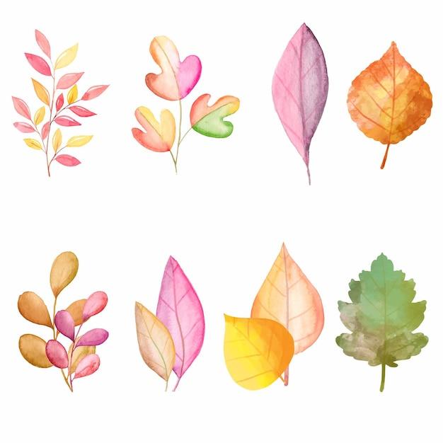 Collezione di foglie di autunno dell'acquerello Vettore gratuito