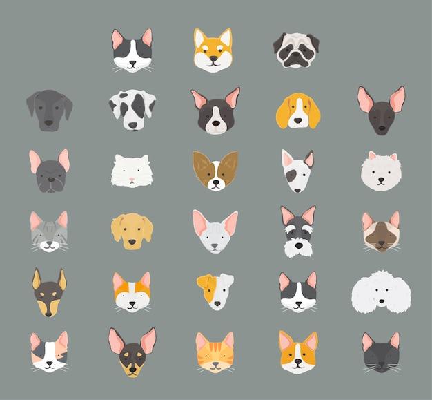 Collezione di icone di gatti e cani Vettore gratuito