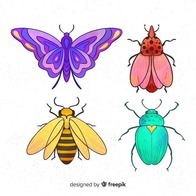 Collezione di insetti colorati Vettore gratuito