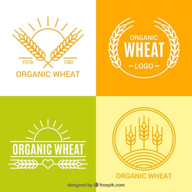 Collezione di logo di grano piatto Vettore gratuito