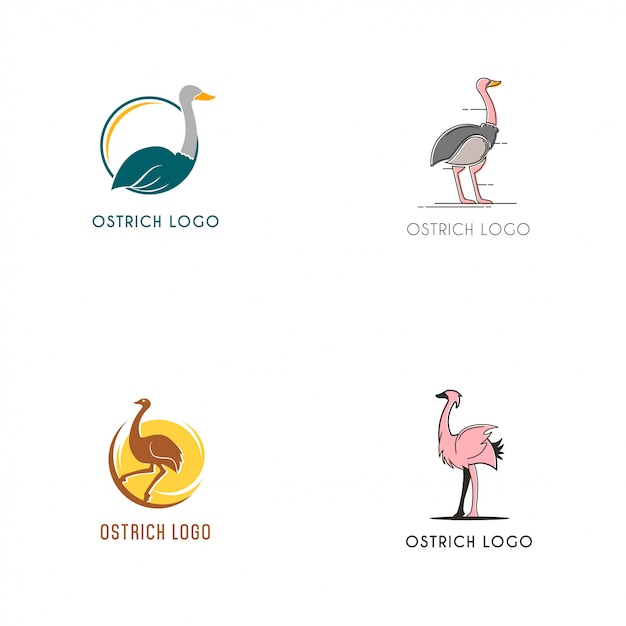 Collezione di logo di struzzo Vettore Premium