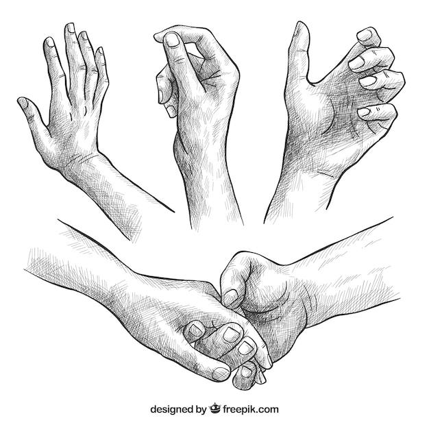 Collezione di mani con diverse pose in stile realistico Vettore gratuito