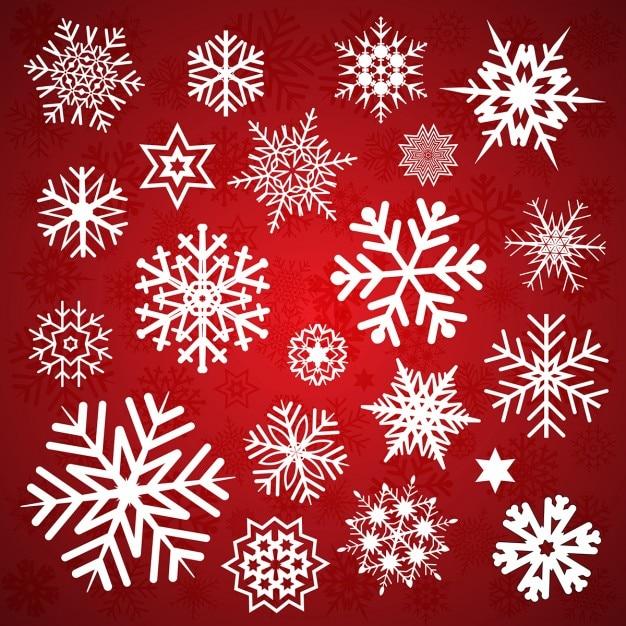 Eccezionale Collezione di Natale di diversi disegni di fiocchi di neve e  ZA56
