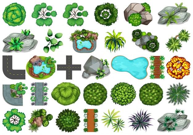 Collezione di oggetti a tema natura esterna ed elementi vegetali Vettore gratuito