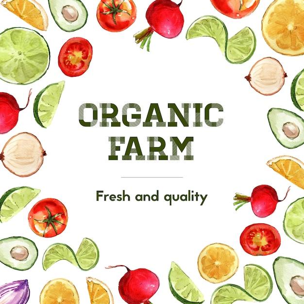 Collezione di pittura ad acquerello vegetale. illustrazione sana dell'annuncio della decorazione organica dell'alimento fresco Vettore gratuito