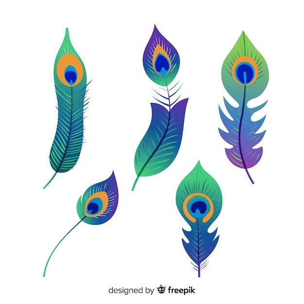Collezione di piume di pavone disegnato a mano moderna Vettore gratuito
