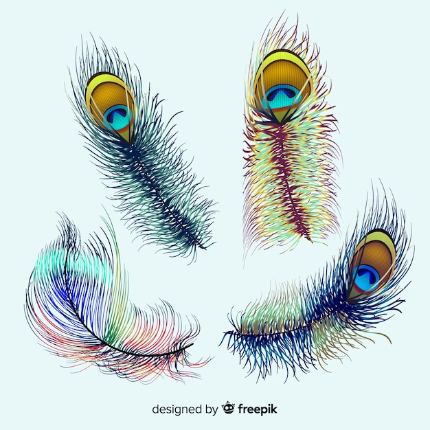Collezione di piume di pavone moderna dal design realistico Vettore gratuito