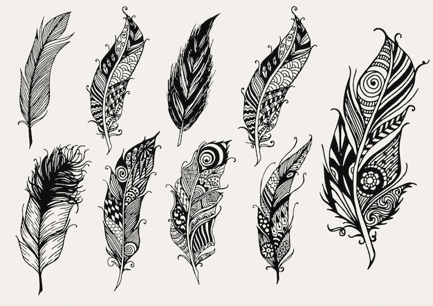 Collezione di piume disegnata a mano Vettore gratuito
