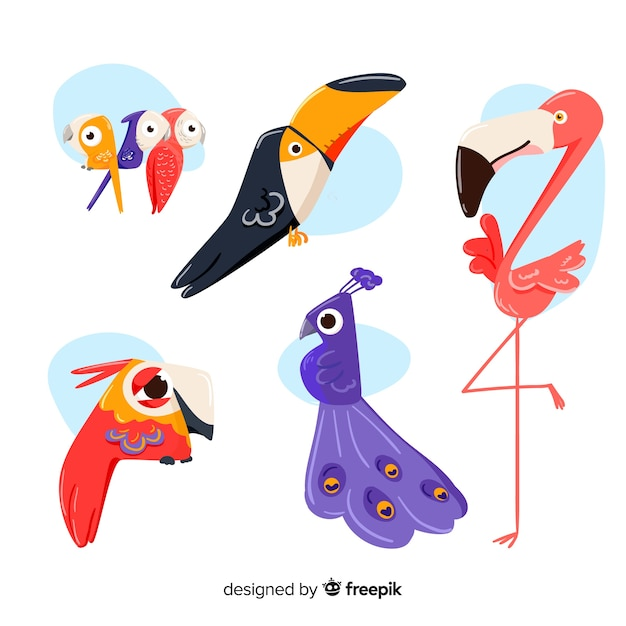 Collezione di uccelli disegnati a mano carino Vettore gratuito