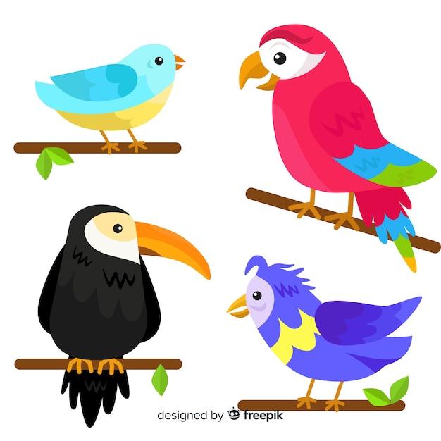 Collezione di uccelli esotici di design piatto Vettore gratuito