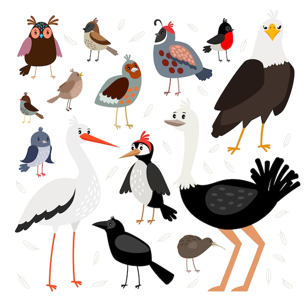 Collezione di uccelli isolata Vettore Premium