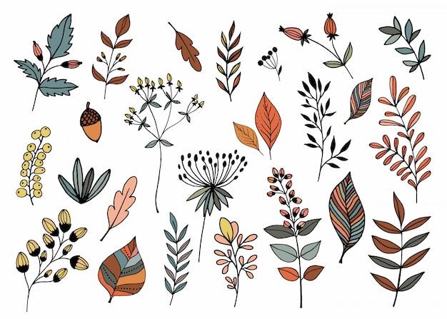 Collezione disegnata a mano con diverse piante stagionali Vettore Premium