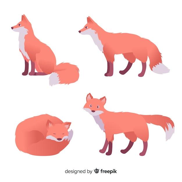 Collezione disegnata a mano di volpi Vettore gratuito